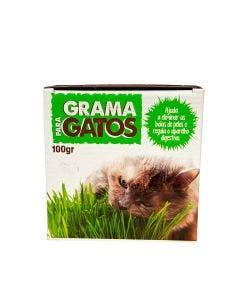 Semente de Graminha Madoca para Gatos